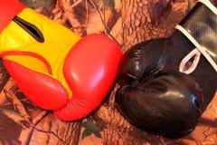 Guantes de boxeo de cuero Fotografía de archivo libre de regalías