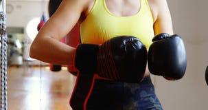 Guantes de boxeo del boxeador que llevan de sexo femenino en el estudio 4k de la aptitud almacen de metraje de vídeo