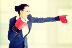 Guantes de boxeo jovenes de la mujer de negocios que desgastan Fotografía de archivo libre de regalías