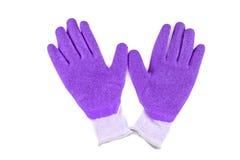 Guantes de goma púrpuras en un fondo blanco Imagenes de archivo