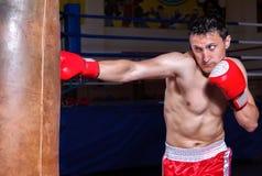 Guantes del boxeador encendido en actitud del entrenamiento Imagenes de archivo