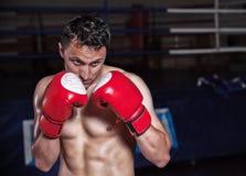 Guantes del boxeador encendido en actitud del entrenamiento Imagen de archivo libre de regalías