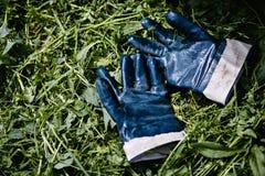 Guantes del jardinero en la hierba fotos de archivo