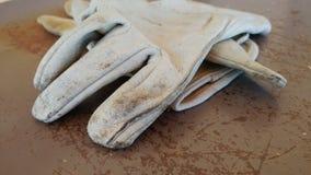 Guantes del Yardwork Imagen de archivo libre de regalías