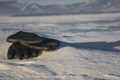 Guantes en la nieve Foto de archivo