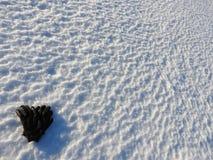 Guantes negros en la nieve blanca imágenes de archivo libres de regalías