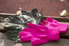 Guantes rosados hechos punto y hoja verde oscuro del otoño de un álamo Foto de archivo