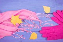 Guantes y mantón de lana para la mujer, la ropa para el otoño o el invierno Imágenes de archivo libres de regalías
