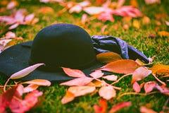 Guantes y sombrero en las hojas en el parque Fotografía de archivo
