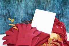 Guanti caldi di Borgogna con una sciarpa e un cappello su colore blu del fondo di legno con le foglie di autunno e tagliato un al Fotografie Stock Libere da Diritti