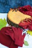 Guanti caldi di Borgogna con una sciarpa e un cappello su colore blu del fondo di legno con le foglie di autunno e tagliato un al Immagine Stock