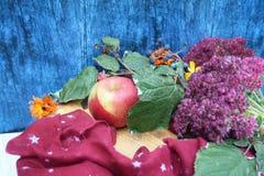 Guanti caldi di Borgogna con una sciarpa e un cappello su colore blu del fondo di legno con le foglie di autunno e tagliato un al Immagine Stock Libera da Diritti