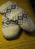 Guanti caldi lavorati a maglia Fotografie Stock