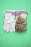 Guanti del lavoro sporco e pulisca Fotografia Stock Libera da Diritti