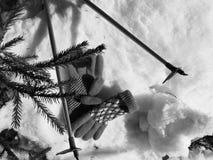 Guanti dello sci, sci e pali di sci nella neve sotto l'albero in inverno o primavera fotografia stock libera da diritti
