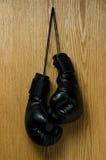 Guanti di inscatolamento Fotografia Stock