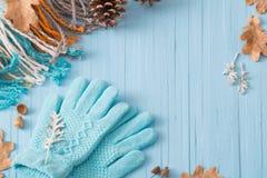 Guanti e foglie di autunno blu su fondo di legno Immagine Stock Libera da Diritti