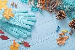 Guanti e foglie di autunno blu su fondo di legno Fotografia Stock
