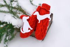 Guanti rossi, figure del cane e rami di albero verdi dell'abete in scatola decorativa di legno su neve Fotografia Stock