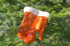 Guanto di Santa Claus su un pelliccia-albero Immagine Stock Libera da Diritti