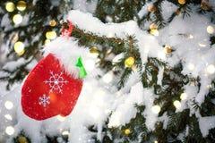 Guanto rosso che appende sull'albero nevoso di natale immagine stock