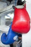 Guantoni da pugile tailandesi rossi e blu di Muay che appendono sull'angolo di boxin immagine stock libera da diritti