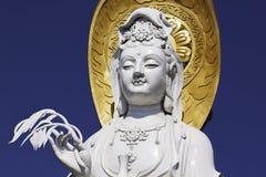 Guanyin Bodhisattva Stock Image