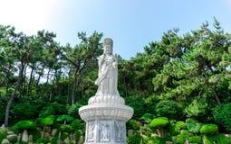 Guanyin or Guan Yin Goddess of Mercy white stone statue at Haedong Yonggungsa Temple royalty free stock images