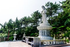 Guanyin or Guan Yin Goddess of Mercy white stone statue at Haedong Yonggungsa Temple royalty free stock photo