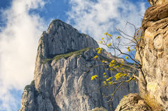 Guanyin Peak Yandangshan China Royalty Free Stock Photography