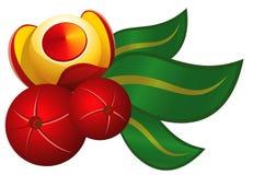 guarana owocowy liść Fotografia Royalty Free