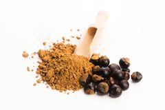 Guarana seeds and powder royalty free stock images