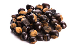 Guarana seeds Royalty Free Stock Images