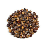 Guarana seeds stock images