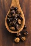 Guarana seeds Stock Image