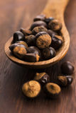 Guarana seeds Royalty Free Stock Photos