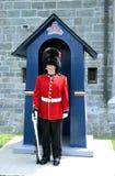 guard Arkivbild