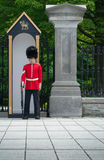 Guard at attention. Guard at Rideau Hall in Ottawa, Ontario, Canada standing at attention at his guard post prior to the changing of the guards royalty free stock photo
