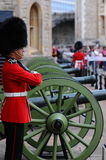 A guard before cannons at the Royal Armories at the Tower of London Stock Photo