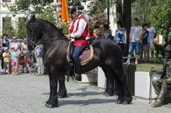The Guard Change at Alba Iulia Fortress Stock Image