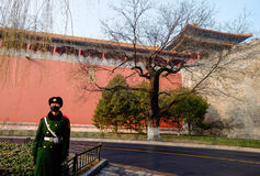 Guard of the Forbidden City Royalty Free Stock Photography