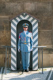 Guard in front of the Prague castle and Presidential palace Stock Photos