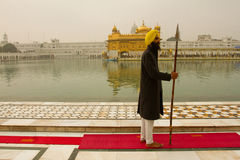 Guard of The Golden Temple of Amritsar, Punjab, India Stock Images