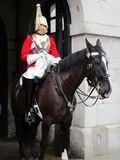 Guard Royalty Free Stock Photo
