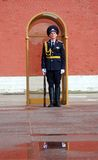 Guard of honor. MOSCOW - APRIL 23: The Guard of Honour at the tomb of the Unknown Soldier at the wall of Moscow Kremlin on April 23, 2012 in Moscow, Russia Stock Photos