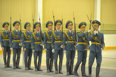 Guard of honor Royalty Free Stock Photos