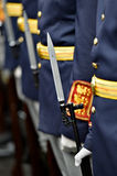 Guard of honor bayonet detail Royalty Free Stock Images
