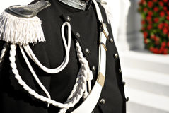 Guard Of Honor. Detail with military guard of honor uniform Stock Image