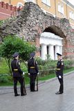 Guard of honor. Royalty Free Stock Photo
