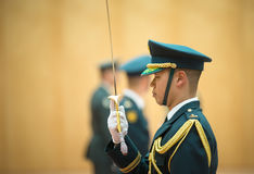 Guard of honor in Tokio. TOKYO, JAPAN - Apr 06, 2016: A guard of honor during a meeting of the President of Ukraine Petro Poroshenko and Prime Minister of Japan royalty free stock photography